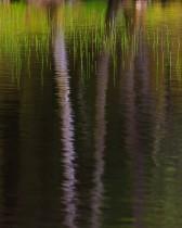 Glencoe Lochan Reflections And Reeds