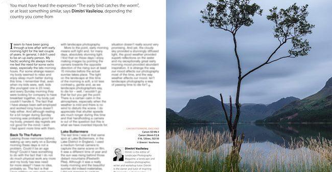 Spotlight-The-Early-Bird-article-by-Dimitri-Vasileiou