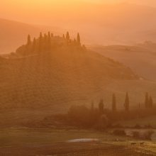 Belvedere-Sunrise,-San-Quirico,-Val-d'Orcia,-Tuscany,-Italy-3873-2