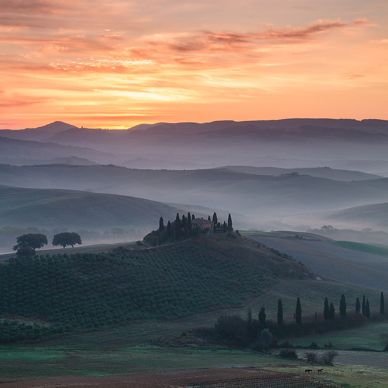 Belvedere-Sunrise,-San-Quirico,-Val-d'Orcia,-Tuscany,-italy-3864