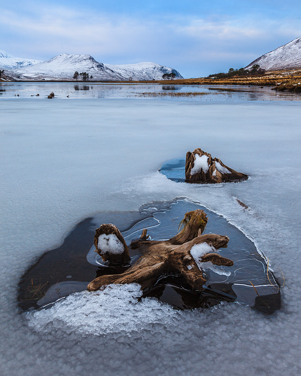 Ice-and-tree-remnants-on-Loch-Droma-5285