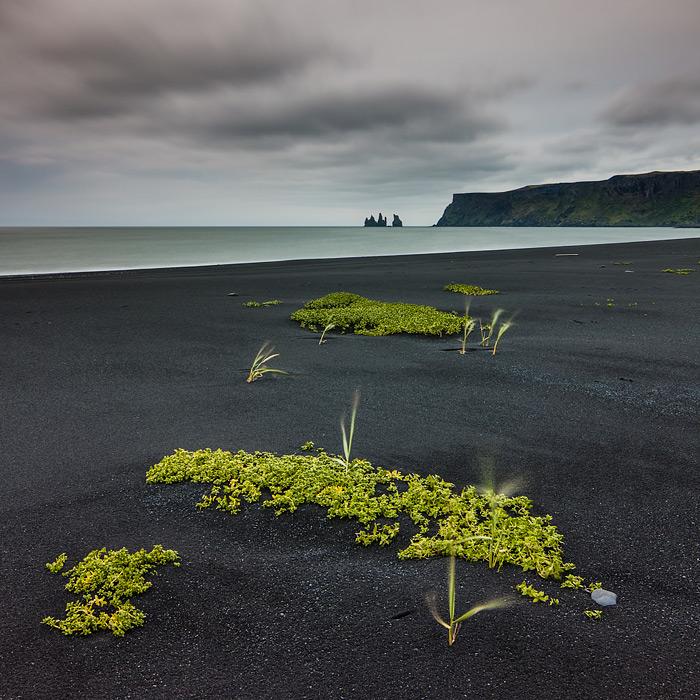 Reynisfjara Black Beach, Iceland