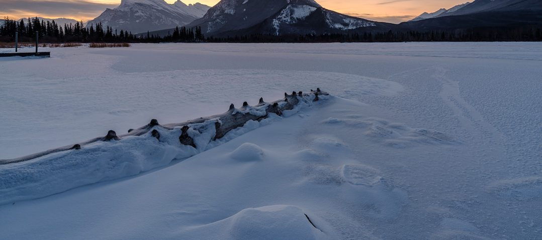 Canadian Rockies Winter Photo Tour